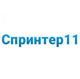 ИБП Импульс Спринтер 11